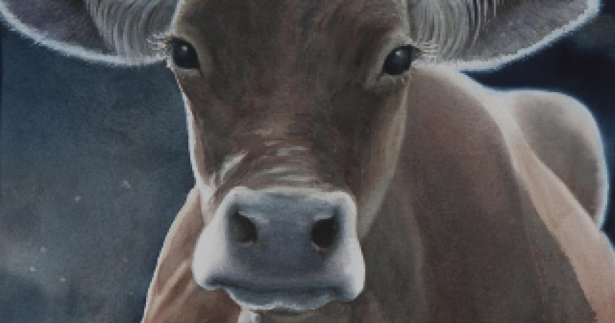 Link to Exhibition | Cattle Call