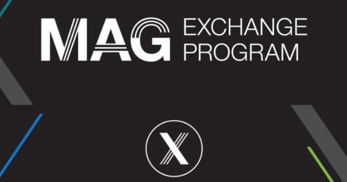 Link to MAG Exchange Artist Mentorship Program