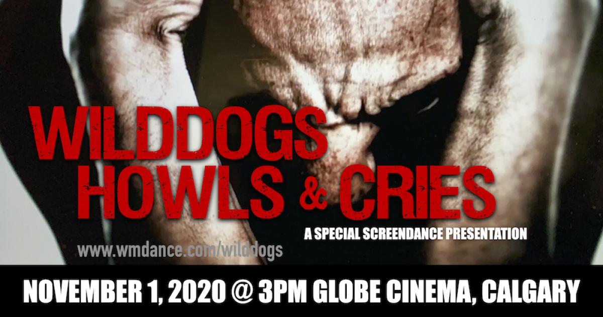 Link to Film Presentation | WildDogs: Howls and Cries