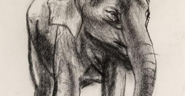 "Link to Work of the Week: ""Elephants Chiefly Series"" by Illingworth Kerr"