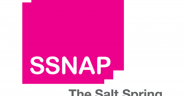 Link to SSNAP Call for Submissions