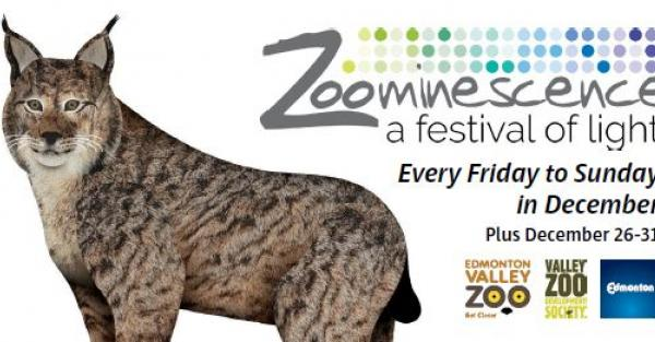 Link to Zoominescence 2018