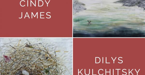 Link to Gallery Reception: Cindy James & Dilys Kulchitsky