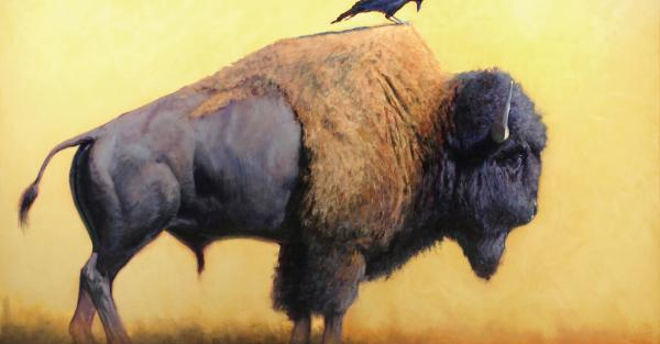 Link to Exhibition: Bison bison bison